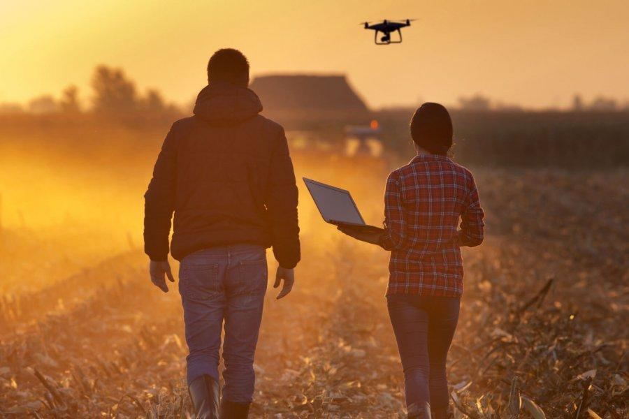 A man and woman walk through a field crop at sunset. An agricultural drone flies overhead, sending data to the woman's laptop.