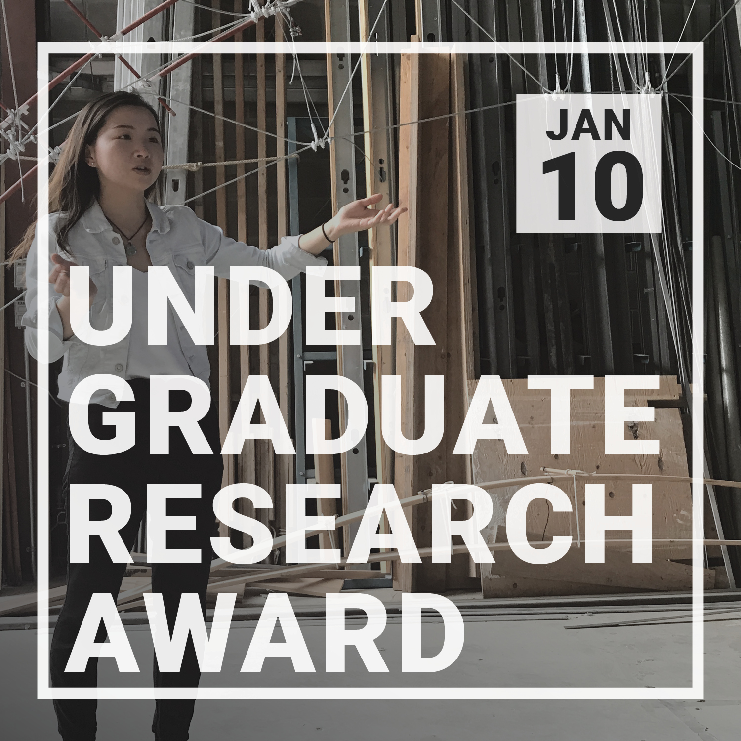 Undergraduate Research Award