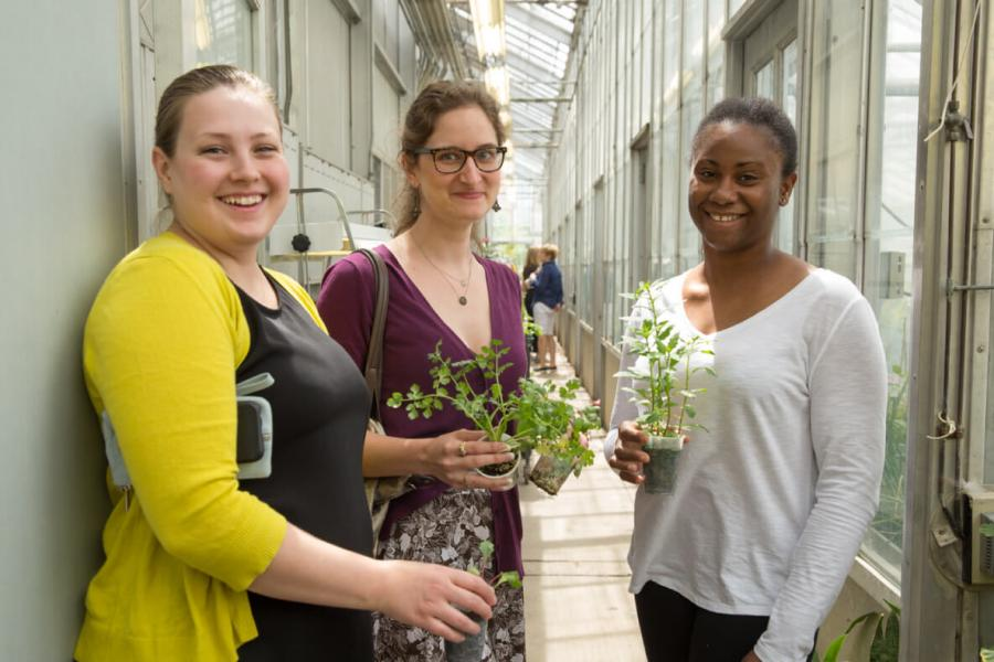 Three University of Manitoba staff holding plants in greenhouse