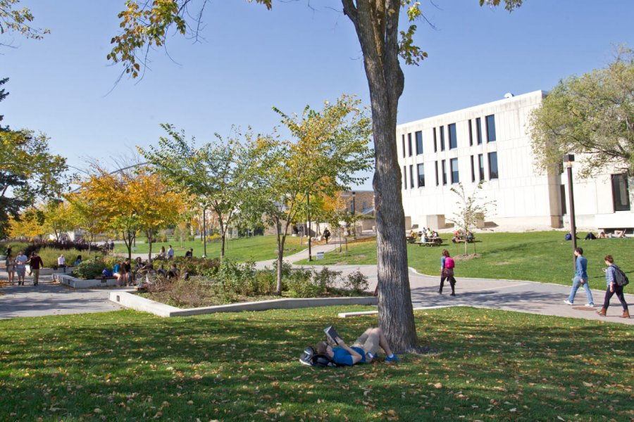 University of Manitoba student reading under tree on Fort Garry campus