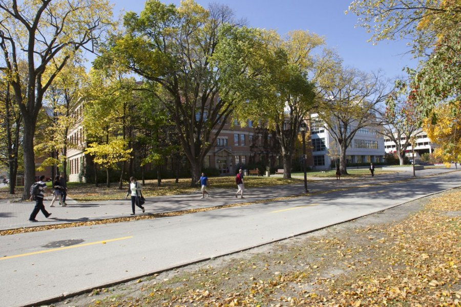 Students walking on campus in the fall. There is a blue sky and many trees. Leaf colours are turning from green to yellow. Sidewalks in which the students are walking on are dry.